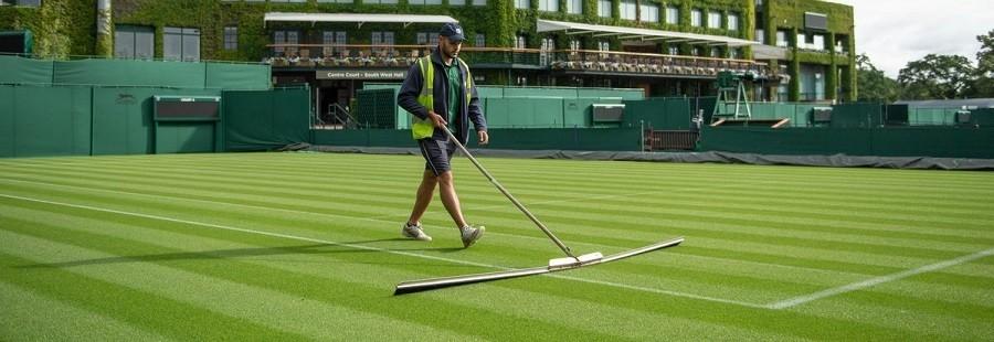 Pronos Wimbledon 2018
